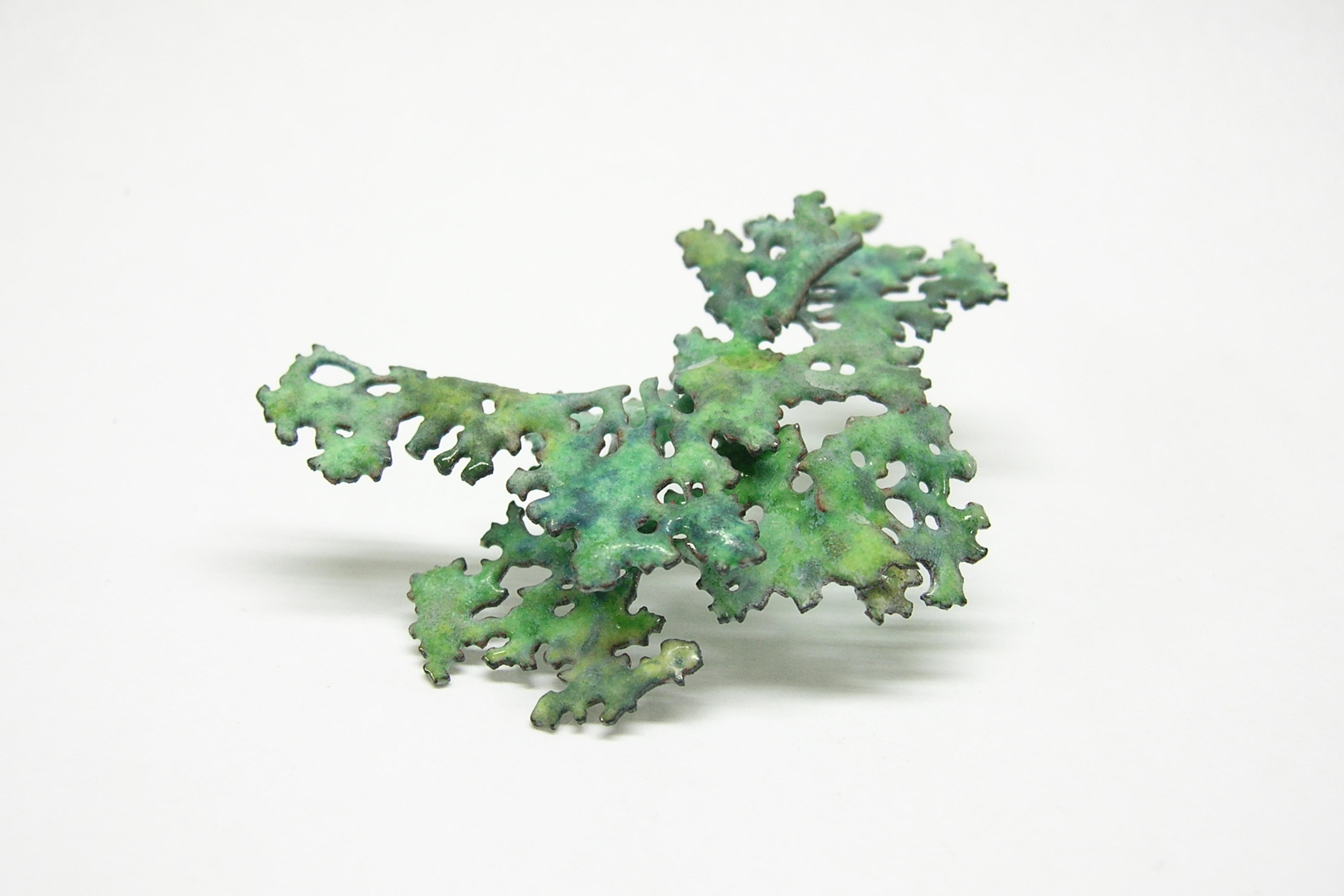 AtsukoBauman-Moss3